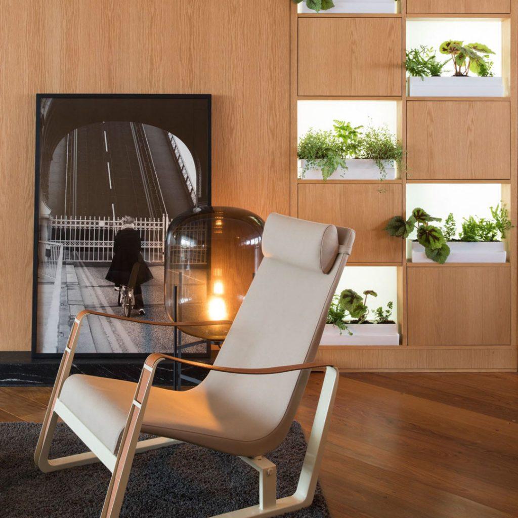 növények a nappaliban
